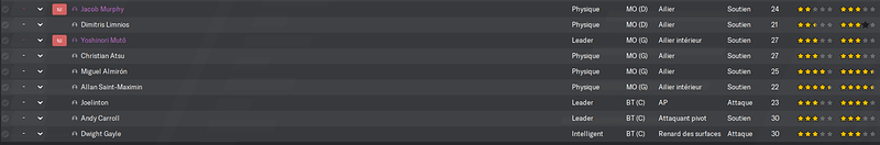 Newcastle United_ Joueurs