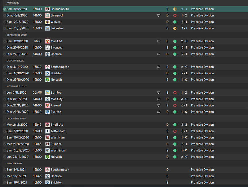 Newcastle United_ Rencontres-8