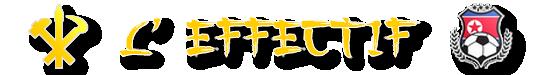 BanniereFMSeffectif