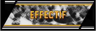 effectif